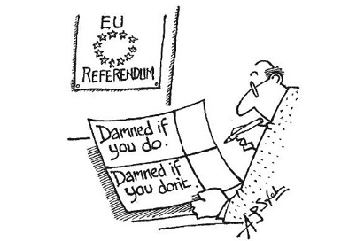 EU referendum The Spectator